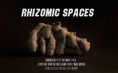 Rhizomic spaces